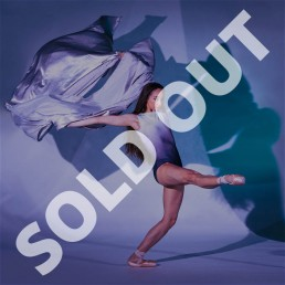 Opening Reception with Ballet Arkansas